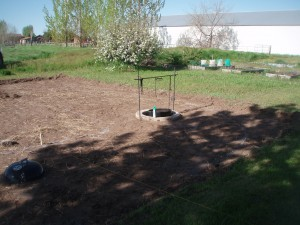 Allen's Back Yard Excavated